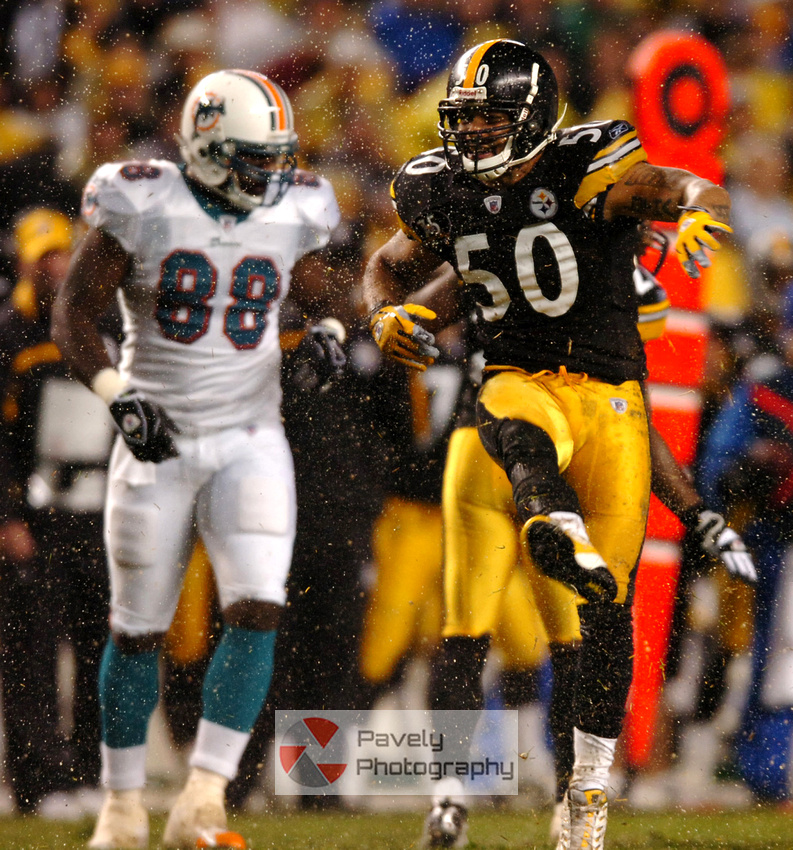 Steelers Dolphins 30